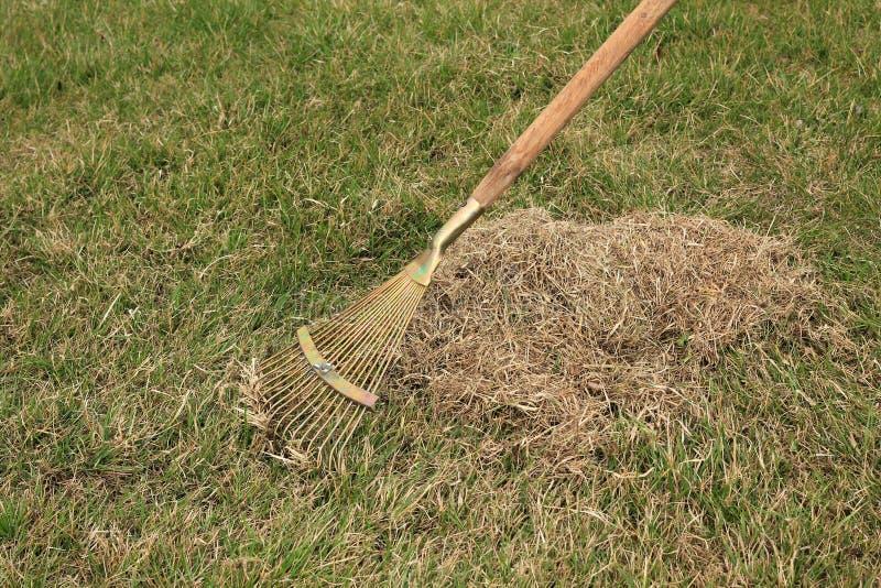 Забота весны для лужайки, ручного scarification лужайки с грабл вентилятора стоковые фото