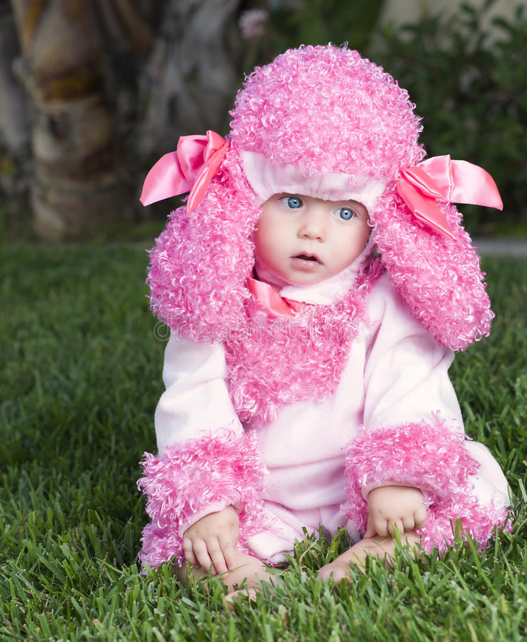 Заботливый младенец одетый в костюме пуделя стоковое изображение rf