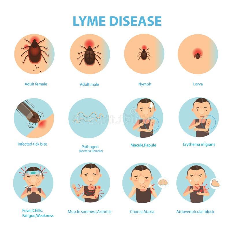 Заболевание Lyme иллюстрация вектора