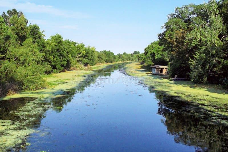 Заболоченный рукав реки Луизианы болотистый стоковое изображение rf