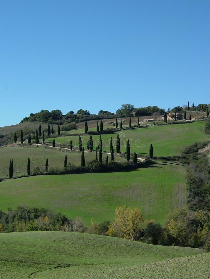 завальцовка Тоскана Италии холмов стоковое изображение