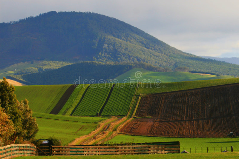завальцовка холма стоковое изображение rf