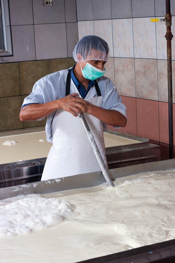 Заводской рабочий сыра стоковые фотографии rf