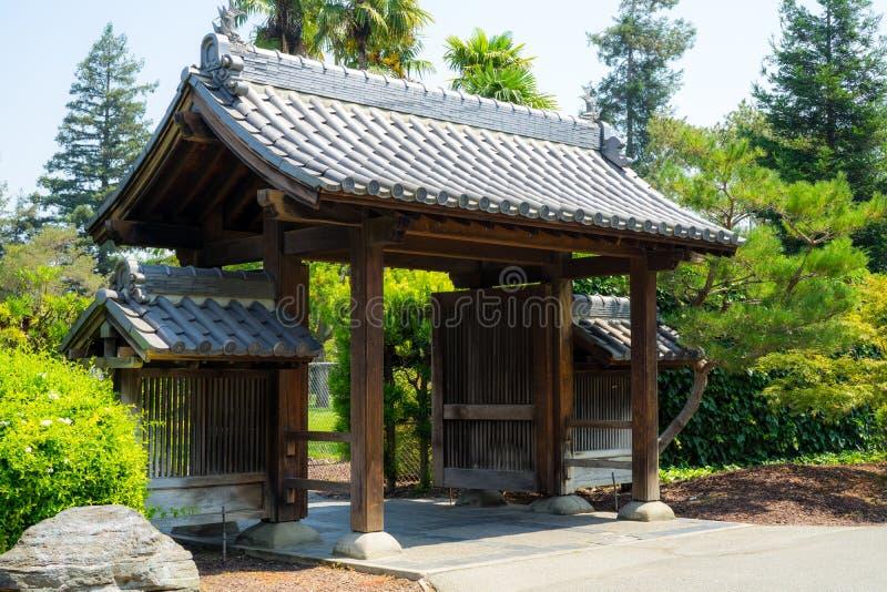 Заводы в японском саде стоковые фотографии rf