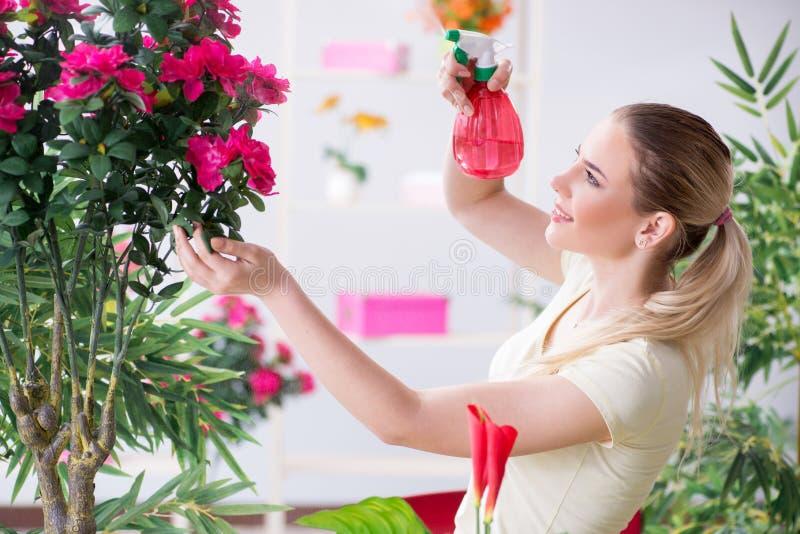 Заводы молодой женщины моча в ее саде стоковые изображения