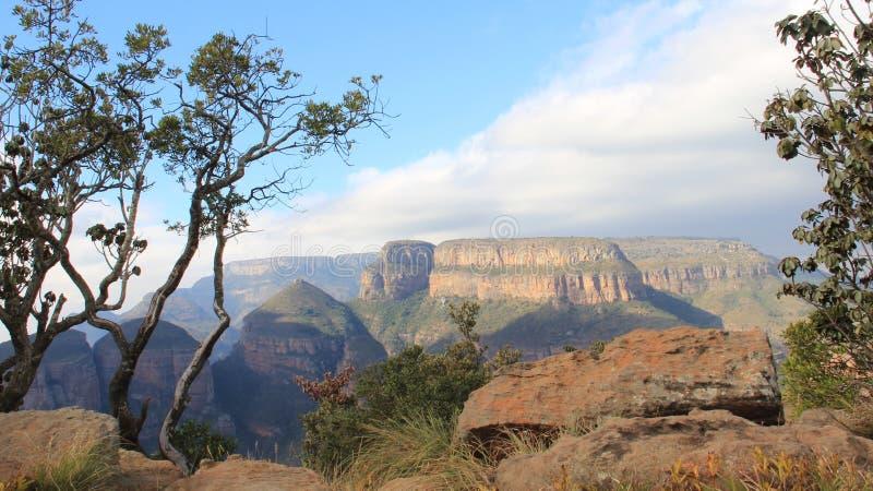 Заводы Саммит скалистой горы и взгляд каньона реки Blyde стоковое фото rf