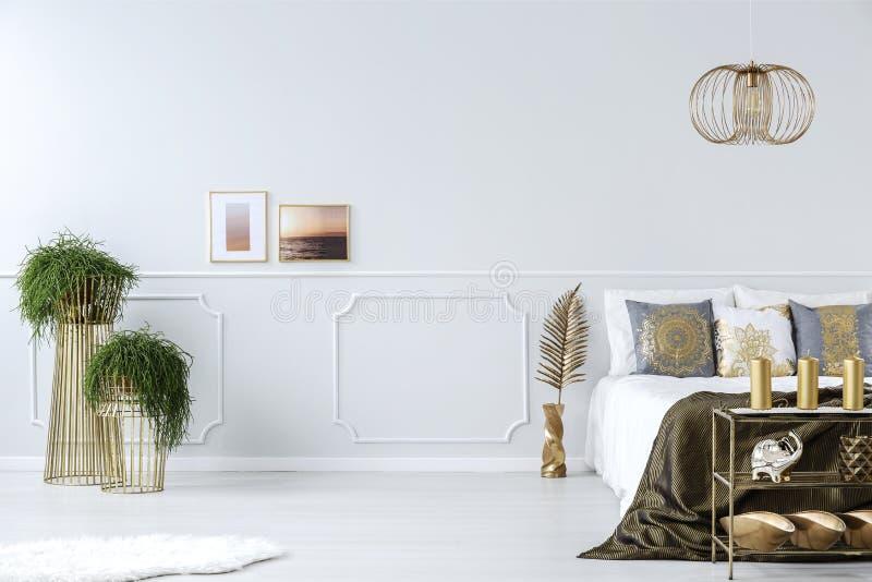 Заводы, фото и кровать стоковое изображение rf