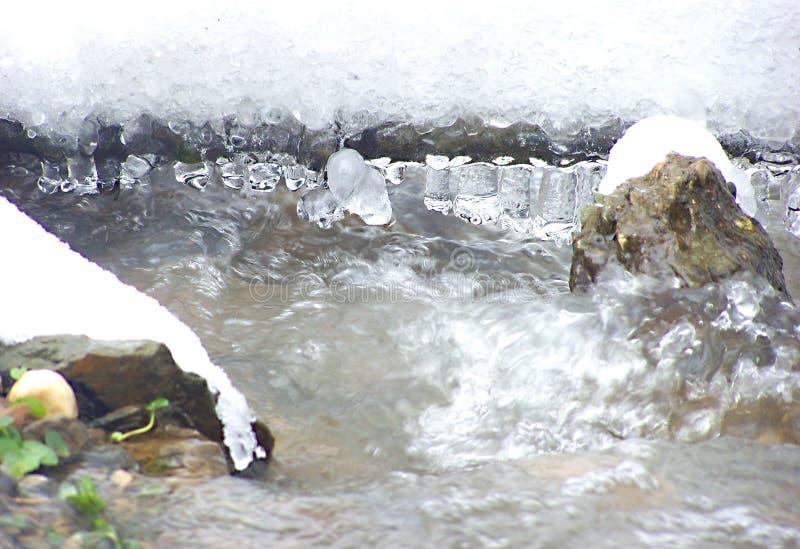 Заводь зимы стоковые фото