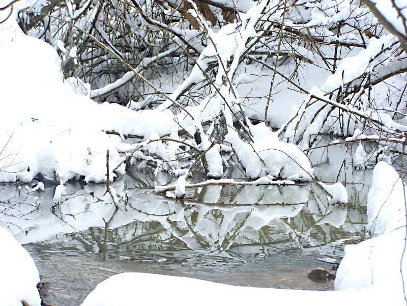 Заводь зимы стоковое изображение