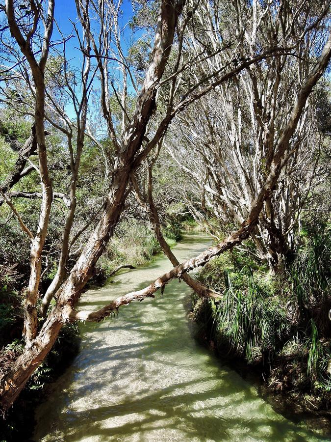 Заводь Eli на острове Fraser в Австралии стоковое фото rf