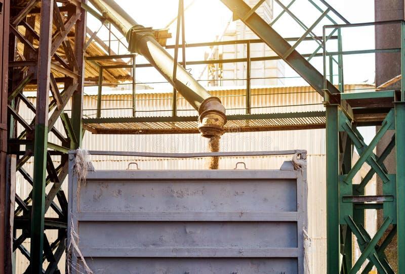 Завод для обрабатывать и хранить зерно, тележка нагружен с зерном, мозолью фабрики стоковое фото rf
