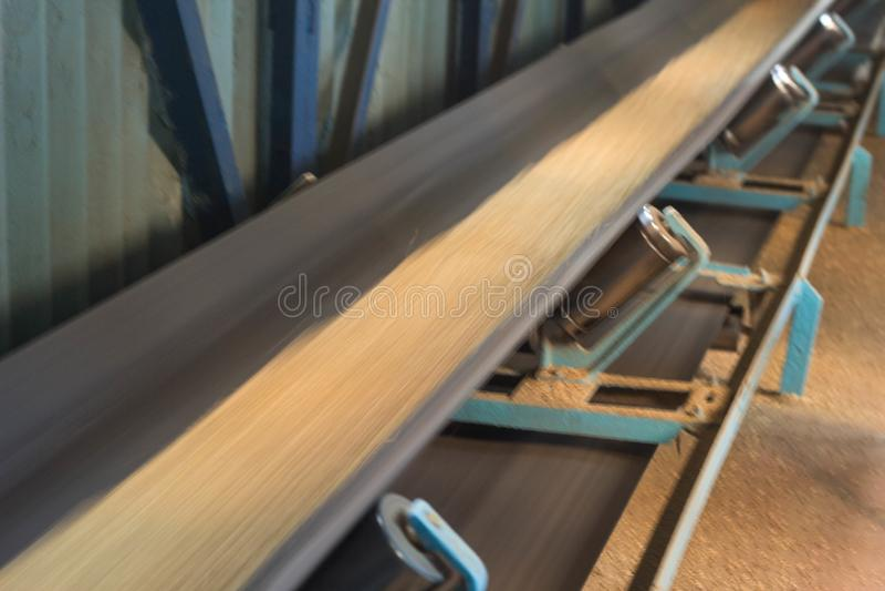 Завод для хранения и обрабатывать зерна, зерна двигает вдоль запачканной конвейерной ленты, конвейерной ленты с семенем стоковая фотография rf