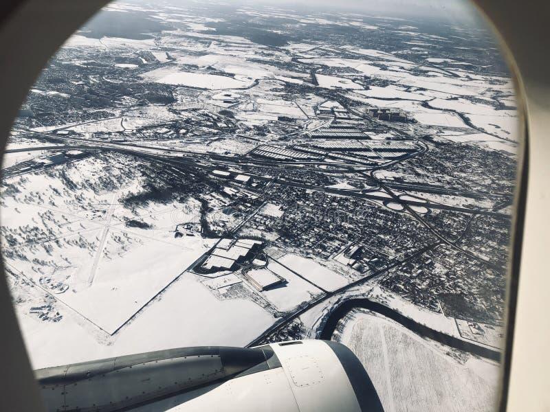 Завод зимы неба стоковые изображения