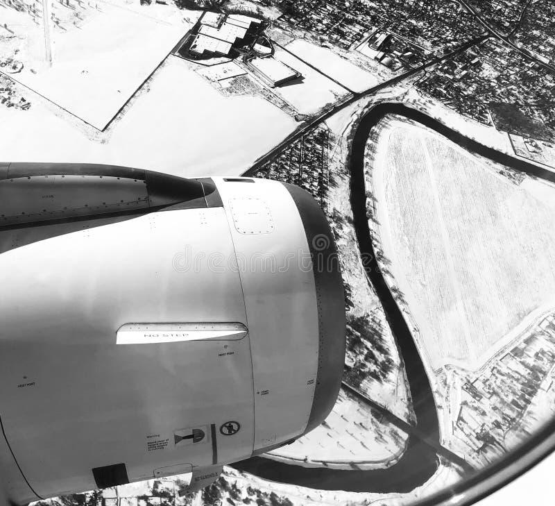 Завод зимы неба стоковая фотография rf