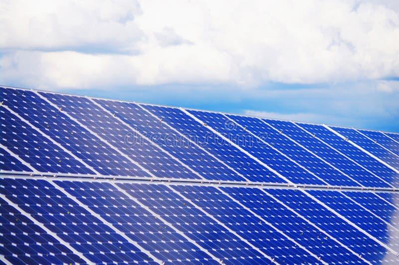 завод солнечный стоковое изображение rf