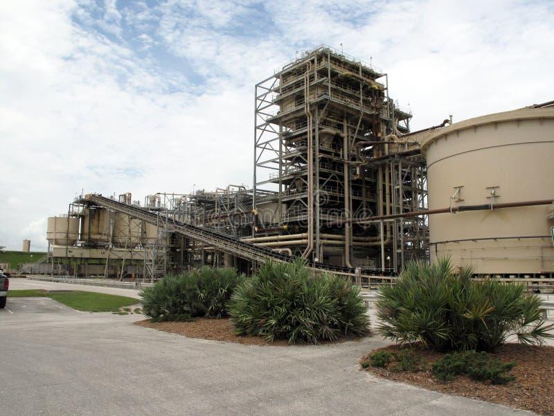завод фосфата стоковая фотография