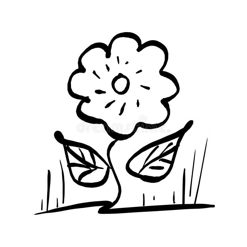 Завод цветка с 2 листьями vector рука dra эскиза иллюстрации иллюстрация вектора
