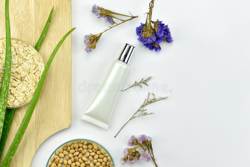 Завод vera алоэ, естественный продукт красоты skincare, косметические контейнеры бутылки с зелеными травяными листьями стоковые фотографии rf