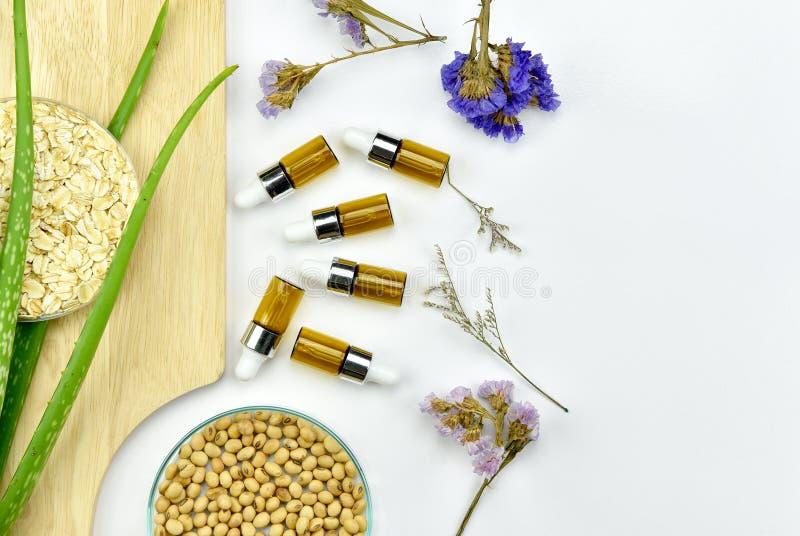 Завод vera алоэ, естественный продукт красоты skincare Косметические контейнеры бутылки с зелеными травяными листьями стоковая фотография