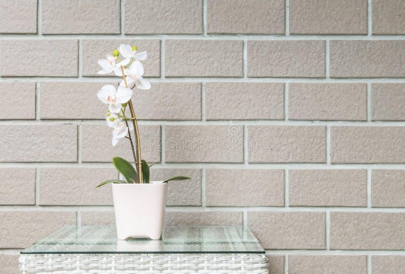Завод крупного плана искусственный с белым цветком орхидеи на розовом цветочном горшке на деревянной таблице weave на запачканном стоковые изображения rf