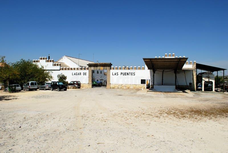 Завод по обработке виноградины, Montilla стоковое фото rf