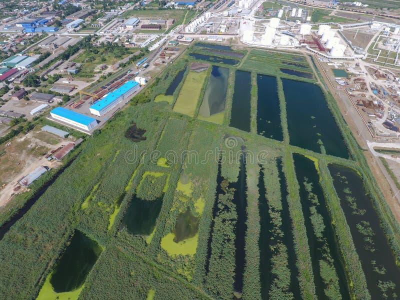 Завод по обработке нечистот внутри Slavyansk-на Кубани Вода для очистки сточных вод в малом городе Яркие тростники на банках воды стоковые изображения rf