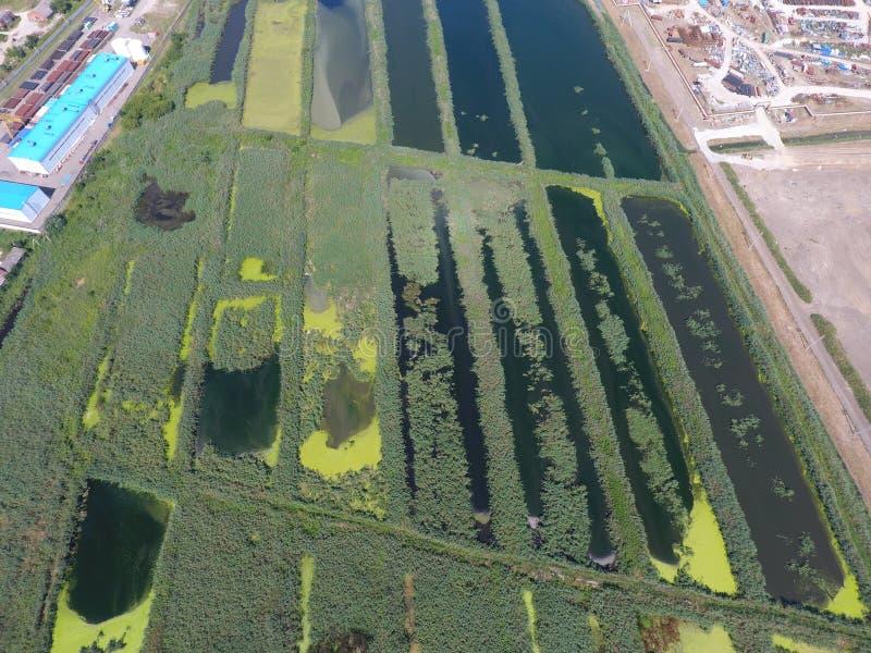 Завод по обработке нечистот внутри Slavyansk-на Кубани Вода для очистки сточных вод в малом городе Яркие тростники на банках воды стоковое изображение rf