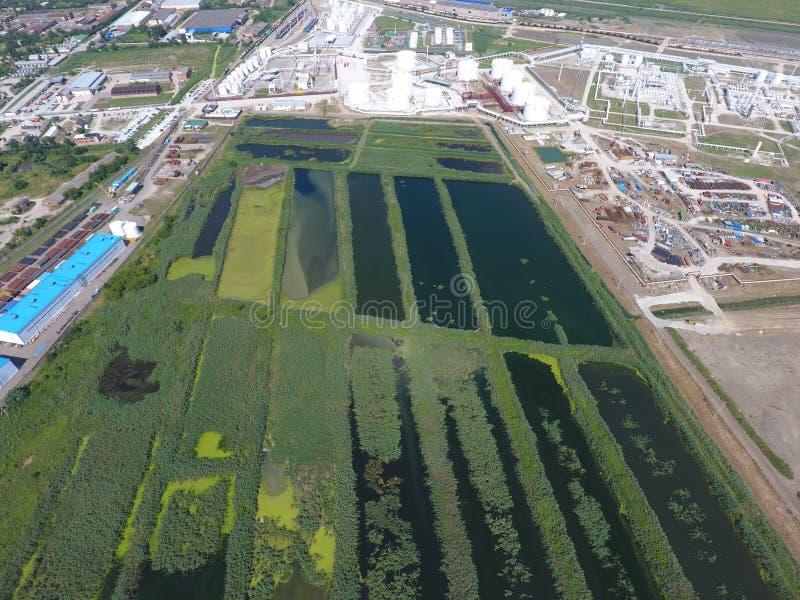 Завод по обработке нечистот внутри Slavyansk-на Кубани Вода для очистки сточных вод в малом городе Яркие тростники на банках воды стоковое изображение