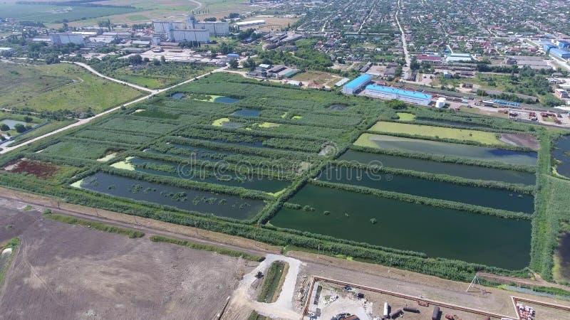 Завод по обработке нечистот в Slavyansk-на-Кубани Вода для очистки сточных вод в малом городе Яркие тростники на банках воды стоковое изображение