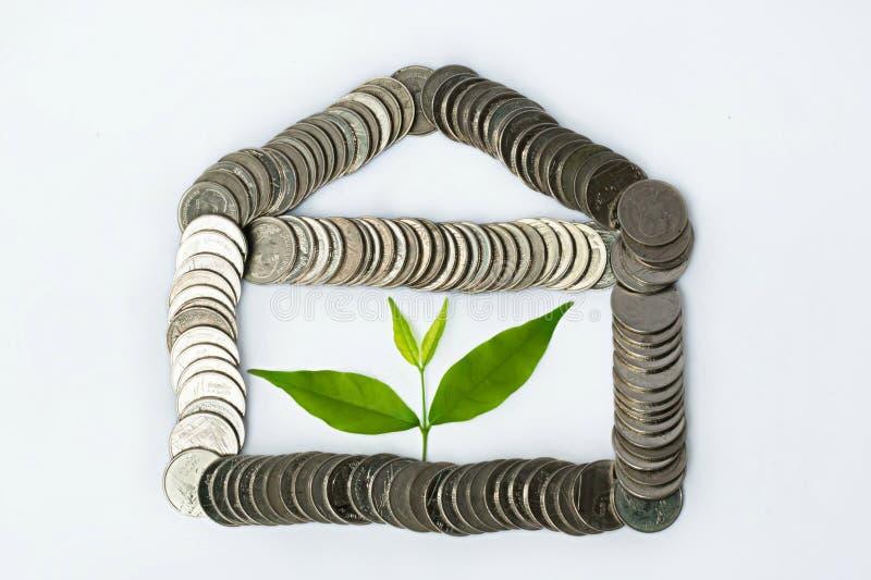 завод растя от монеток - финансовое планирование стоковое фото