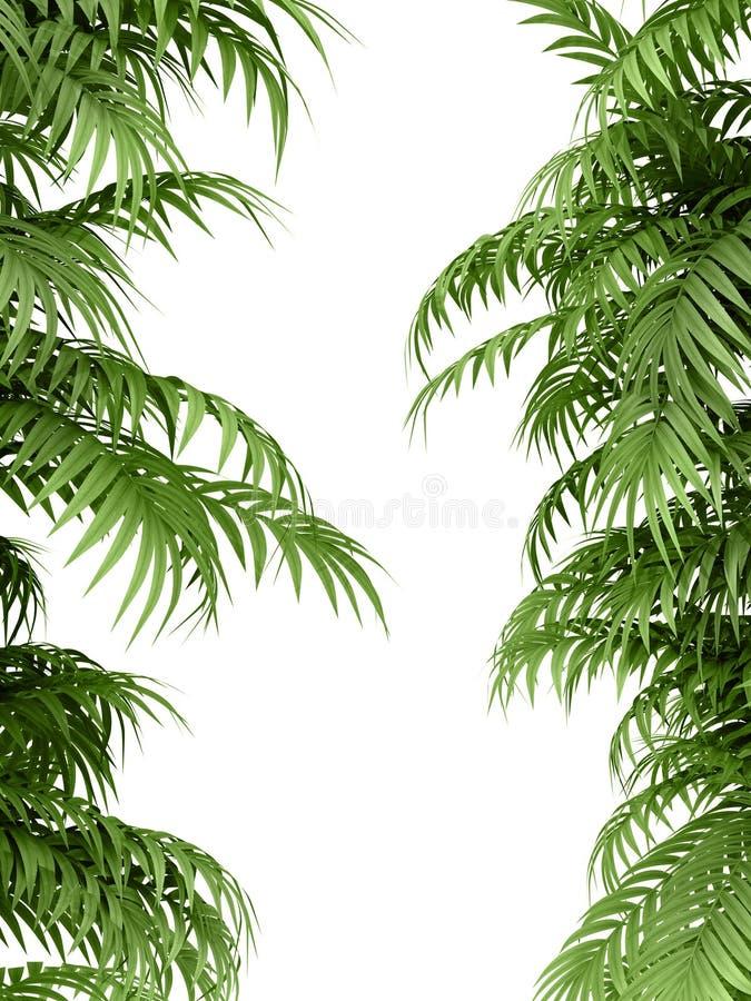 завод тропический бесплатная иллюстрация