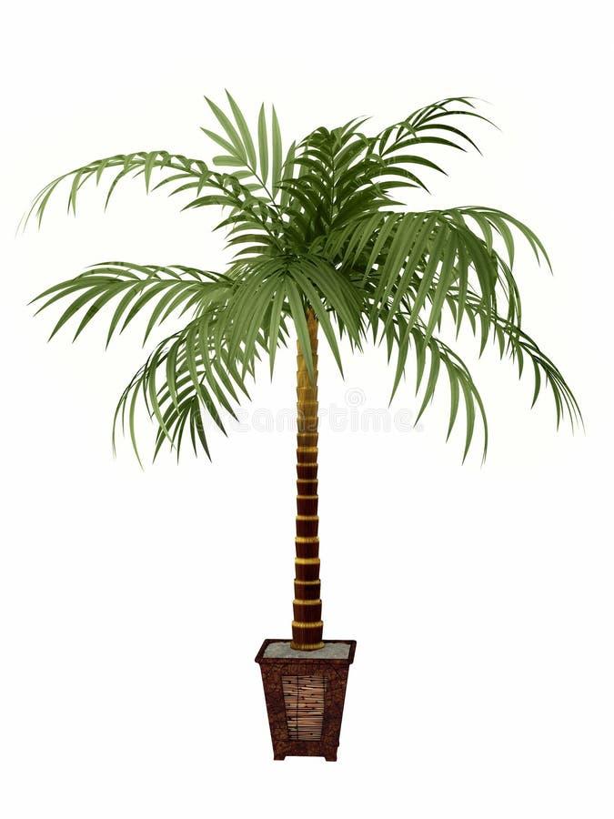 завод тропический иллюстрация вектора