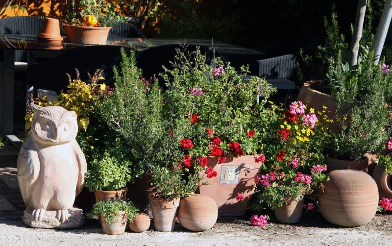 Заводы Ornamental и трав на террасе стоковая фотография rf