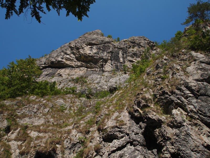 Заводь в осени, Apuseni горы, Румыния стоковое фото