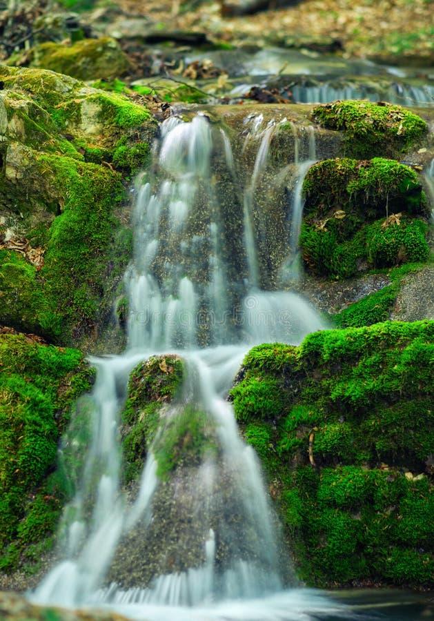 Заводь горы на 2 каскадах с чистой водой стоковое фото