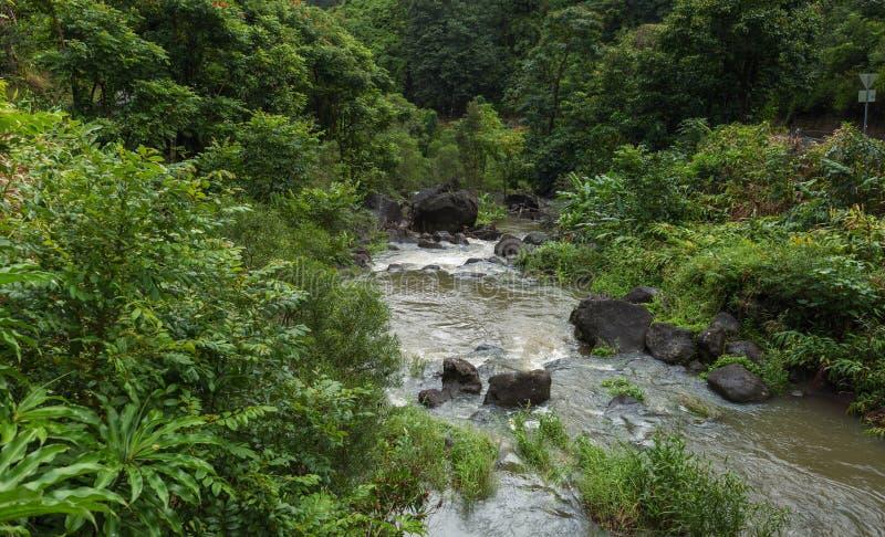 Заводь на дороге Мауи Гавайских островах Ганы стоковое изображение