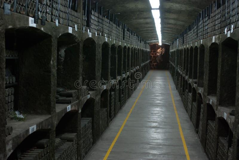 Завод Massandra стоковое фото rf