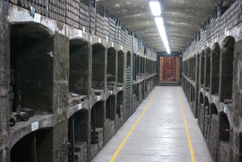 Завод Massandra стоковое изображение rf