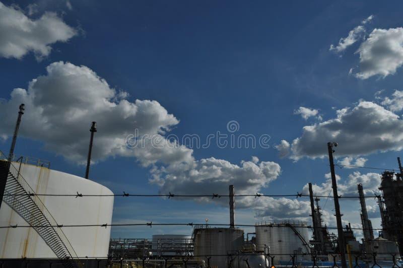 Завод Petrolium от за колючей проволоки стоковое изображение rf
