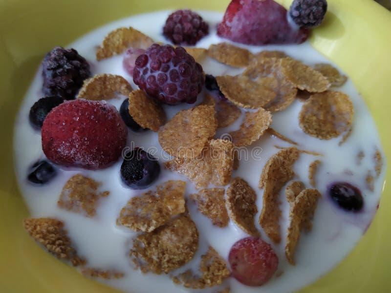 Завтрак мозоли домодельный с ягодами стоковые фото