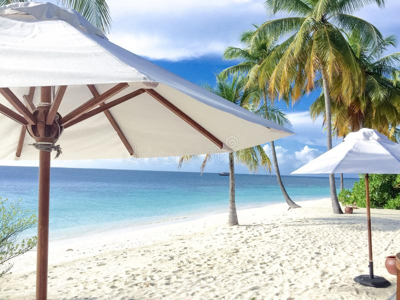 Завтрак на пляже стоковое фото