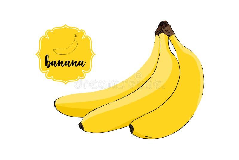 Завтрак-обед бананов мультфильма вычерченных зрелых изолированных на белизне Желтый ретро значок ярлыка магазина иллюстрация штока