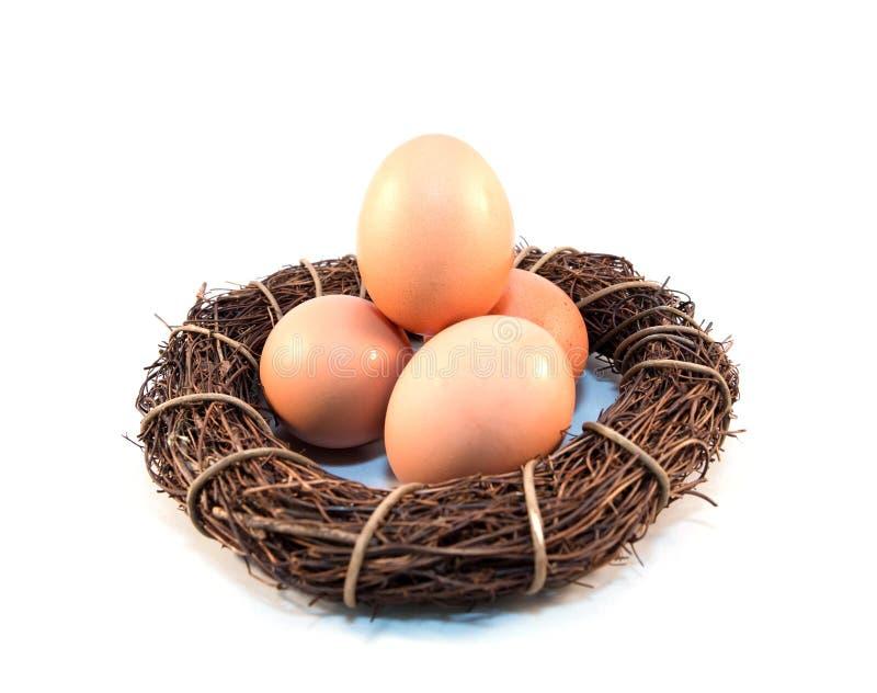 Завтрак фермы еды яйц из гнезда стоковое изображение