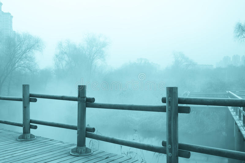 Загадочный ландшафт тумана стоковое фото