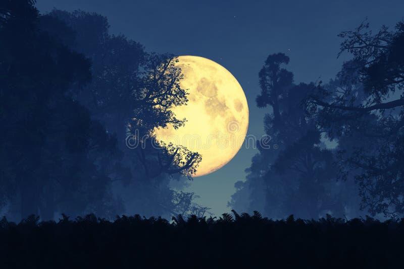 Загадочный волшебный лес сказки фантазии на ноче в полнолунии стоковые изображения