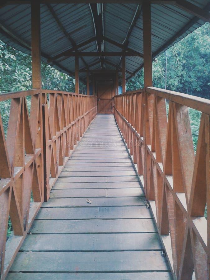 Загадочный мост стоковая фотография rf