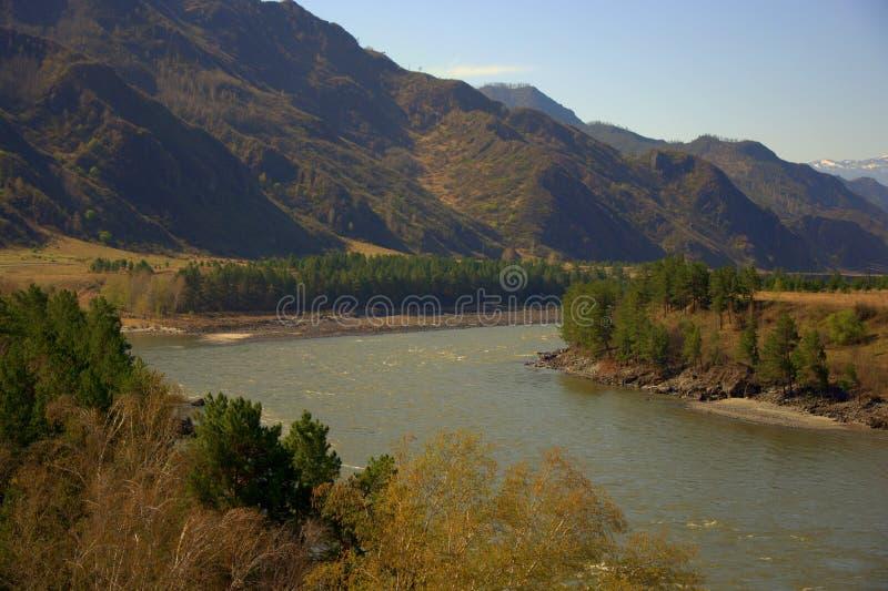 Загиб кровати реки Katun горы, пропуская через долину на ноге высоких холмов Altai, Сибирь, Россия стоковые изображения rf