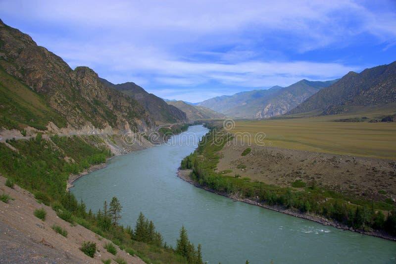 Загиб русла реки на ноге холма Бирюза Katun, Altai, Сибирь, Россия E стоковое изображение rf