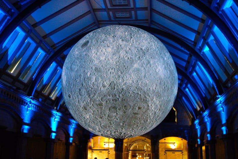 Загоренная модель луны - внутри помещения стоковая фотография rf