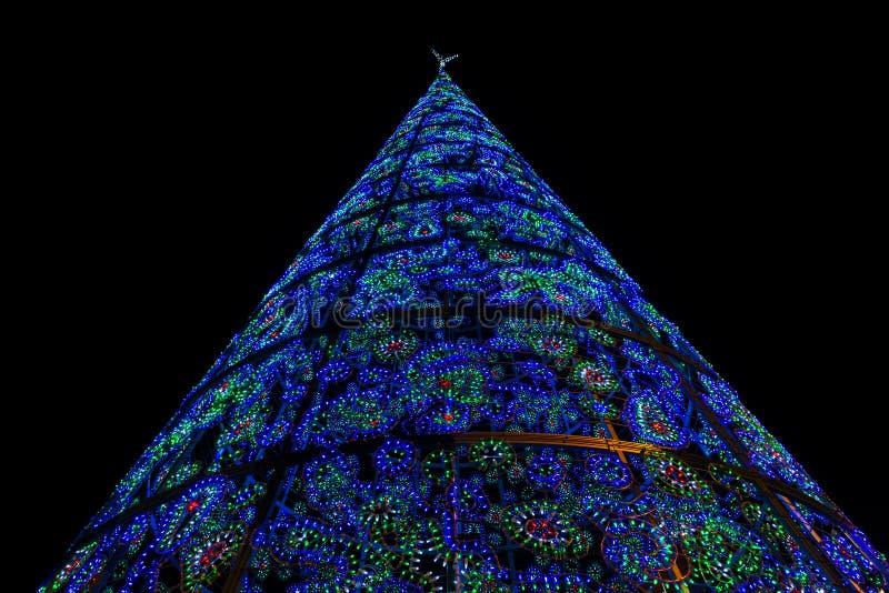 Загоренная рождественская елка в Puerta del Sol в Мадриде стоковая фотография